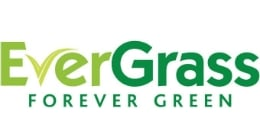 Evergrass Windsor 20mm Artificial Grass